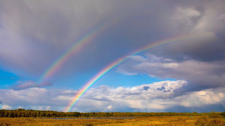Doppelter Regenbogen über der Insel Bock: Wie entsteht ein doppelter Regenbogen? (Foto: Imago, IMAGO / blickwinkel)