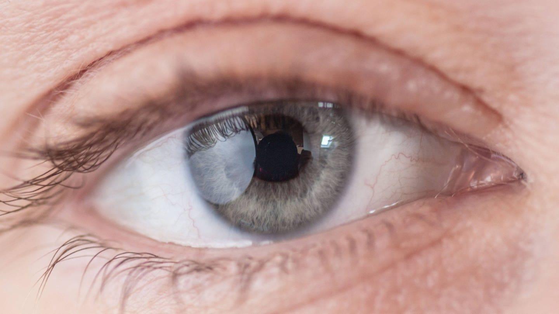 Nahaufnahme eines menschlichen Auges: Nehmen Menschen Farben gleich wahr? (Foto: Imago, IMAGO / CHROMORANGE)
