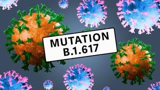 "Symbolische Abbildung von Coronaviren unter dem Titel ""Mutation B.1.617"". (Foto: Imago, IMAGO / CHROMORANGE)"