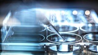 Die mRNA-Technologie könnte künftig für die Herstellung verschiedenener Impfstoffe und Medikamente zum Einsatz kommen. (Foto: Imago, imago images/Westend61)