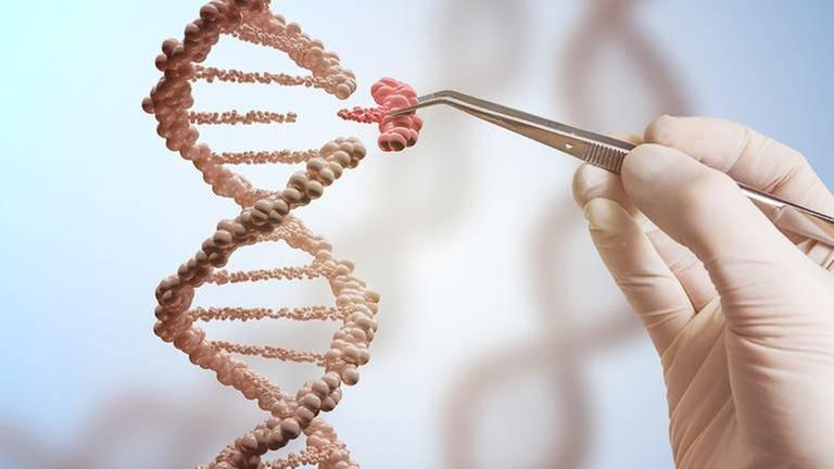 Eine weiß behandschuhte Hand zieht mit einer Pinzette einen Teil aus einem riesigen DNA Strang (Foto: Getty Images, Thinkstock -)