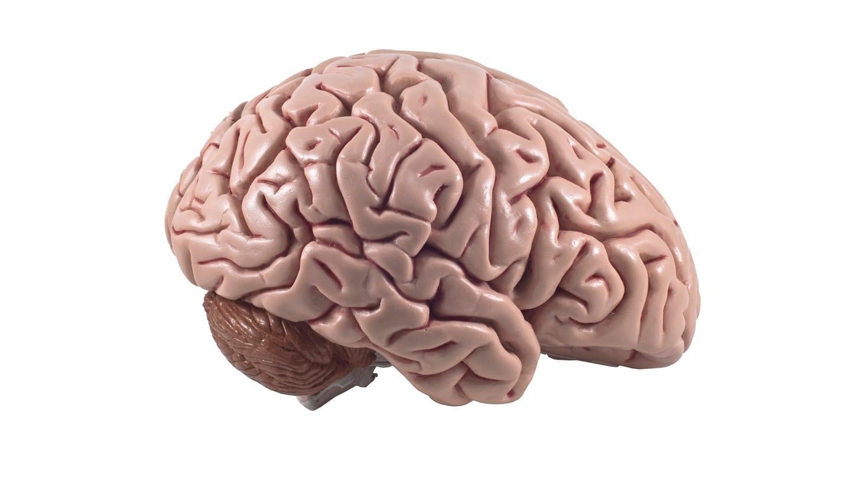 Abnehmen durch Gedanken (Foto: Colourbox)