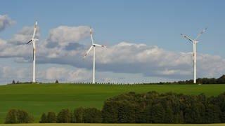 Verhinderte Windkraft (Foto: Colourbox)