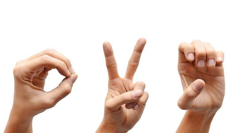 Mehrere Hände gestikulieren mit Hilfe der Gebärdensprache. (Foto: Getty Images, Thinkstock -)